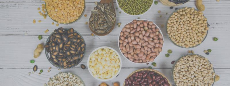 nutrition for stronger immunity